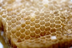 honeycomb-300x200